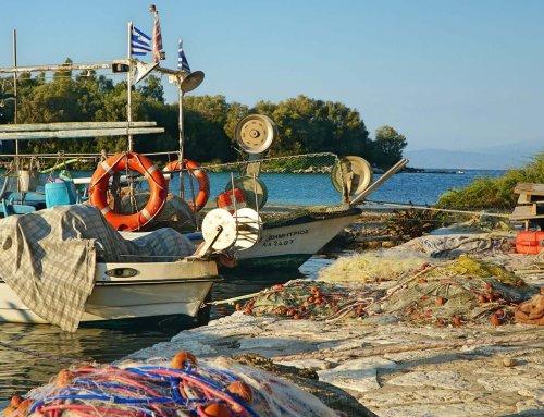 Graikija II dalis. Mūsų riebus, šiltas ir vėjuotas graikiškas gyvenimas